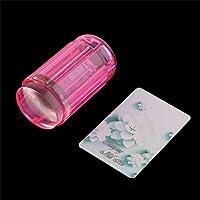 Sanzhileg Peso Ligero DIY Jelly Nail Art Stamping Claro ABS Suave + Estampador de Silicona Conjunto rascador de Placa 60 * 30 * 30 mm Cinco Colores - Rojo