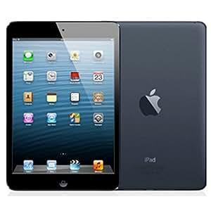apple ipad mini md528nf a tablette tactile 7 9. Black Bedroom Furniture Sets. Home Design Ideas