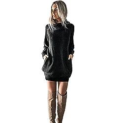 SHOBDW Mujeres de Punto Vestido de Cuello de Rollo de Vestido de Puente Damas Mini tamaño (Negro, L)