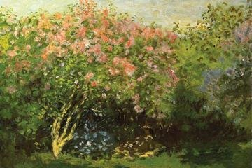 Lilacs in the Sun 12x18 Giclee on canvas by Buyenlarge