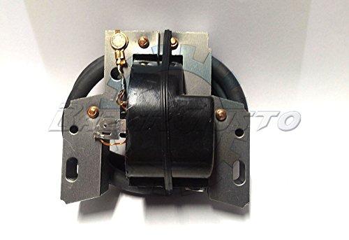 Spule Elektronische Zündung Briggs & Stratton 7-8-10-11-15-16HP -