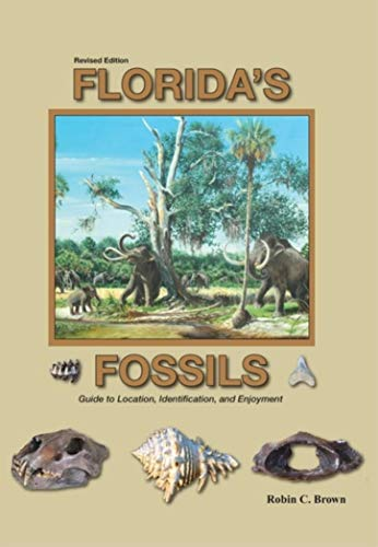 Florida's Fossils (English Edition) -