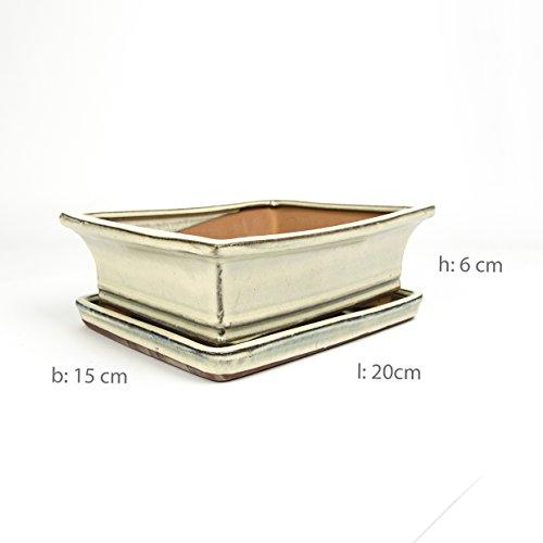 Inter Flowers - Bonsaischale Weiss - L: 20cm B:15cm H:6cm mit Untersetzer, Keramik geflammt, Indoor/Outdoor, eckig, Unterteller, hochwertig