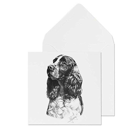 Mike Sibley Springer Spaniel Hunderasse blanko Grußkarte Alle Anlässe. Versandkostenfrei -