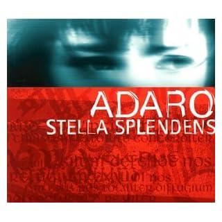 Stella Splendens