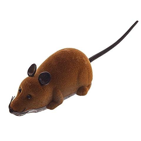 Smartfox RC Fernbedienung drahtlose ferngesteuerte Spielzeug Spielmaus Maus Ratte für Haustier Katze Hund in braun