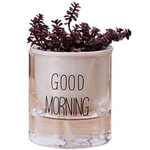 Xigeapg 1 Stück Automatische Bew?sserung Pflanz Gef?? Topf Keramik Blumen Topf Mit Glas Wasser Beh?lter Für Grün Pflanzen Sukkulente Kaktus Schwarz Kleine -