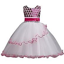 Vestido Elegante Boda Fiesta con Flores para Niña Vestido de Princesa Tul Lentejuelas Tutu Vestidos de rendimiento