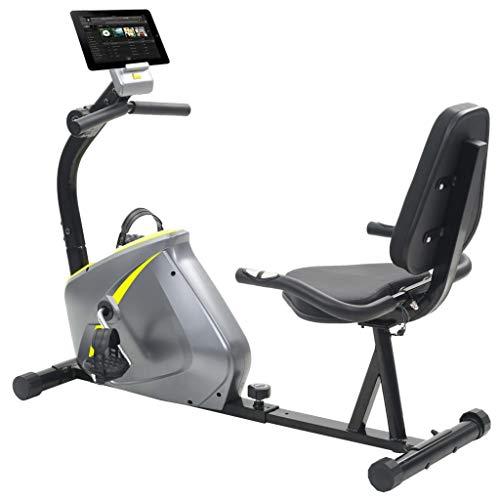 Festnight Sitz-Ergometer Fahrradtrainer Fitnessfahrrad Heimtrainer mit LCD Computer-Display 5 kg Drehmasse 136 x 56 x 92,5 cm
