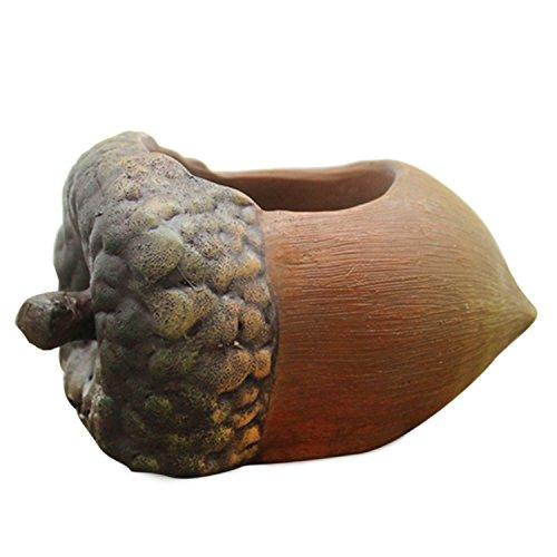 gosear-macetas-de-resina-para-maceta-suculento-cactus-planta-avellana