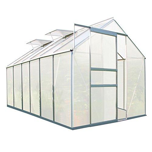 Zelsius Aluminium Gewächshaus für den Garten | 380 x 190 cm | 6 mm Platten | Vielseitig nutzbar...
