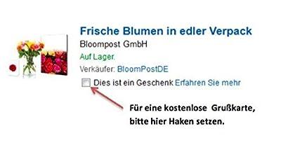 Frische zartrosa Rosen- in den Briefkasten mit persönlicher Grußkarte von BloomPost GmbH bei Du und dein Garten