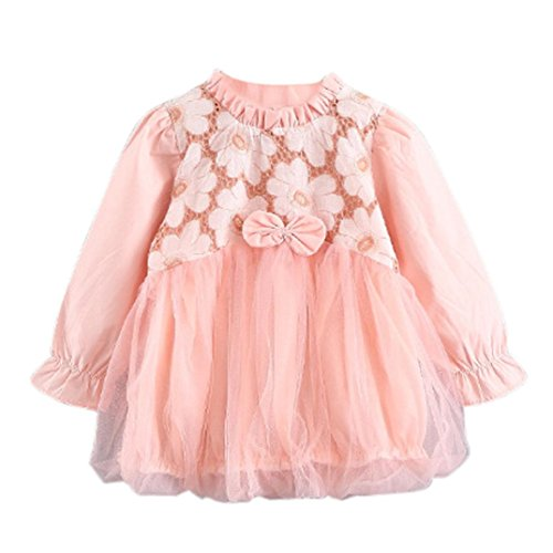Floral 5'3 (0-3 Jahre Kinder Pompon Kleid, DoraMe Baby Mädchen Mode Herbst Mesh Floral Niedliche Minikleid Kleinkind Net Garn Kleid (Rosa, 3-6 Monate))