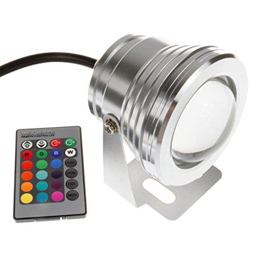 Green House - LED Spot Projecteur Exterieur IP65 en Aluminium RGB 16 Couleur 10W DC12V + Telecommande
