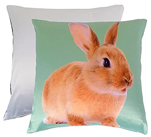 CUTE SPRING BUNNY RABBIT SUPERSOFT GREEN BROWN WHITE CUSHION COVER 17