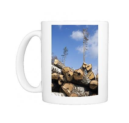 Photo Mug of Stacked Birch Logs - left on a logging site for