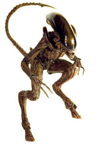 "[Movie Masterpiece] ""Alien 3"" 1/6 scale figure Alien Dog (japan import) 3"
