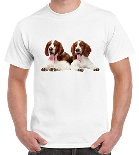 Welsh Springer Spaniel Puppies Men's T-Shirt