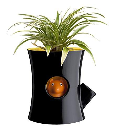 Qualy Log & Squirrel Pot à Fleurs avec système d'irrigation intégré Schwarz/Gelb