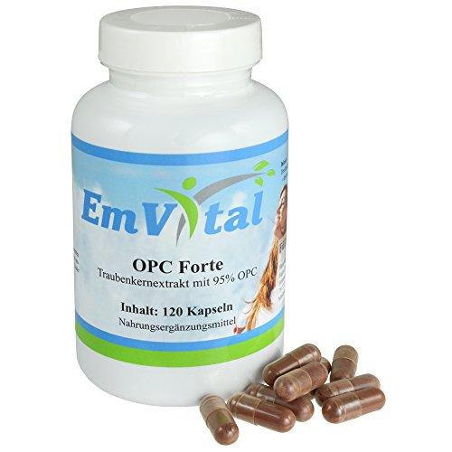 OPC Traubenkernextrakt Kapseln mit 95{341bd0835e061cc40442b6d3034d93eaa20c7b21dd868b92ff4ba7938f520af9} OPC - vegan-hergestellt in Deutschland - 665mg OPC pro Tagesdosis - ohne Vitamin C - 120 Kapseln