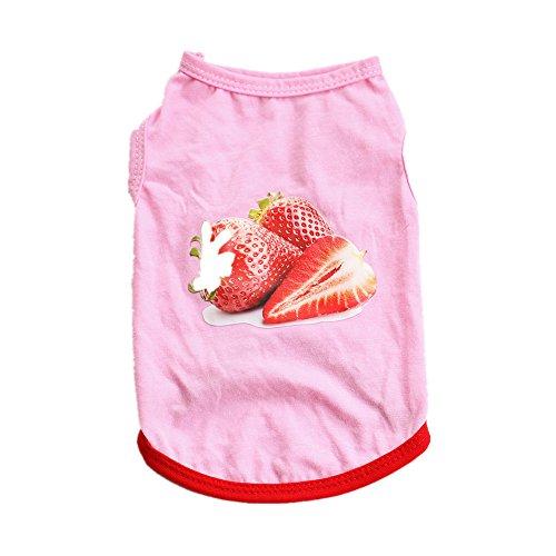 Muster Kostüm Erdbeere - Smniao Haustier Weste, Hundebekleidung Erdbeere Muster Kleider Atmungsaktiv Shirt Puppy Kostüm für Welpen Chihuahua Teddy(Rosa, S)