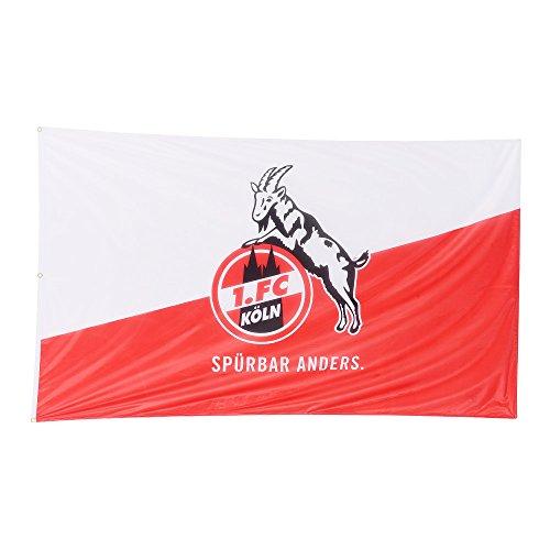 "Hissfahne 250x150cm quer ""Spürbar Anders."" 1. FC Köln"