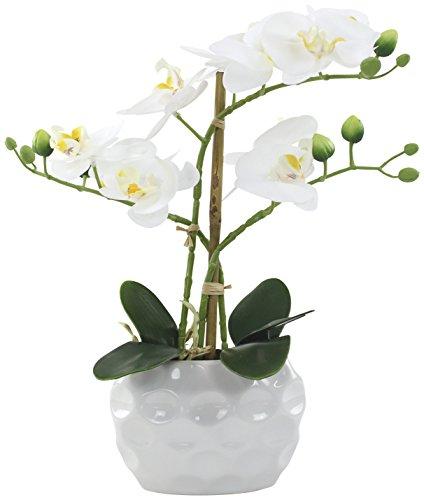 Decoline Künstliche Orchidee 33cm - Blüten weiß - Keramik Übertopf weiß
