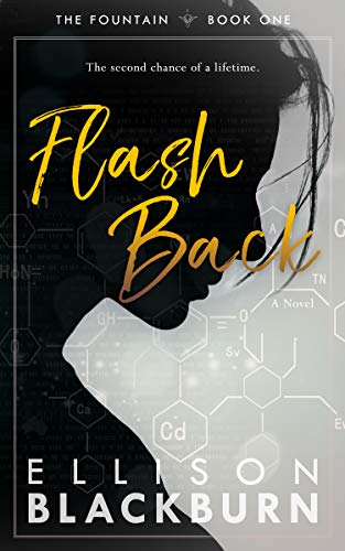 Flash Back (The Fountain Book 1) (English Edition) eBook: Ellison ...