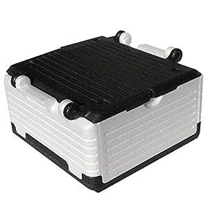 Lisk. Flip Box Ice Bear Classic 23l – Isolierte & Faltbare Thermobox aus hochwertigem EPP für Einkäufe & Ausflüge