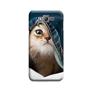 Desicase Samsung Grand Prime Hidden Cat 3D Matte Finishing Printed Designer Hard Back Case Cover (Multicolor)