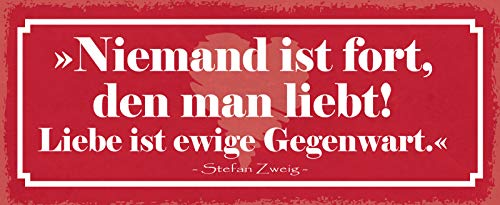 FS Liebe ist ewige Gegenwart Blechschild Schild gewölbt Metal Sign 10 x 27 cm