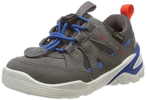 ECCO Jungen Biom VOJAGE Sneaker, Grau (Titanium/Olympian Blue 51244), 30 EU