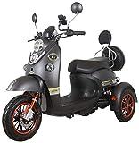 Green Power Scooter electrico de Movilidad Moto Para Personas Mayores | Recreativo adulto 3 ruedas hasta 25 km/h 60V 100AH 600W