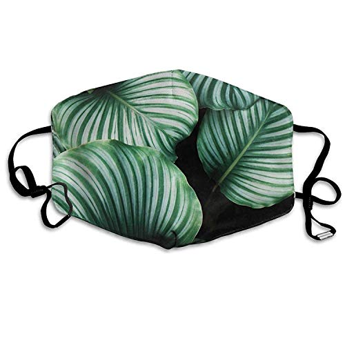Fashion Outdoor Mouth Mask with Design, Kids Rainforest Green Leaves Dust Mask, Antibacteria Comfortable Activated Carbon Filter Insert Washable Polyester Mouth Mask with Adjustable Straps Green Peeling Cap