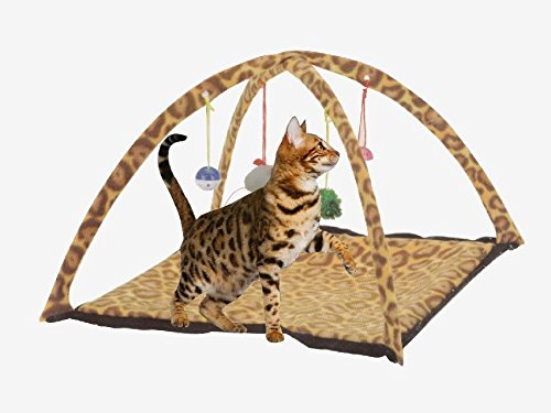 Butterfly-Pet-Cat-Dog-Play-Activity-Fun-Playing-Toy-Bed-Pad-Blanket-Mat-House-Bells-Tent-Soft-Stuffed