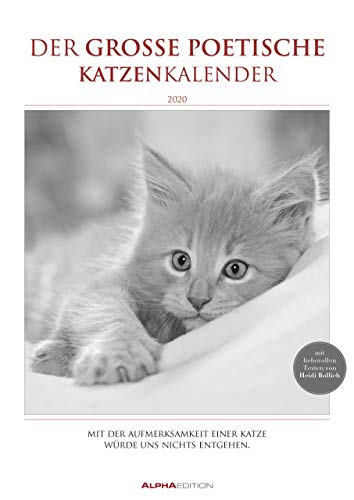 Der große poetische Katzenkalender - Kalender 2020 - Alpha Edition-Verlag - Wandkalender mit bezaubernden Fotos - 29,7 cm x 42 cm