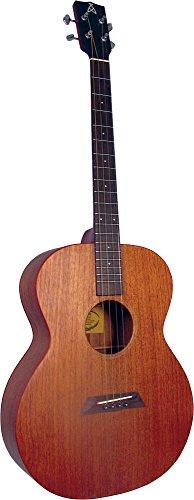 Ashbury AT-24 Guitare ténor Naturel