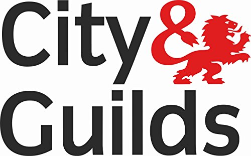 City & Guilds veicolo sticker autoadesivo Decal vinyl Graphic Dimensioni 320 x 200 mm (32 x 20 cm), nero e rosso