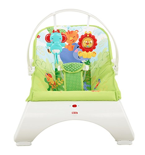 Fisher-Price CJJ79 Comfort Curve Wippe Babyschaukel und Sitz mit, ab nehmbarem Spielbügel inkl. Tierspielzeug, ab 0 Monaten, max. 9 kg