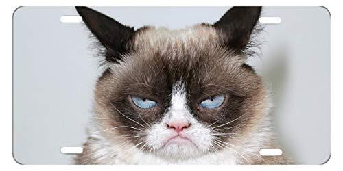 DQVWGK Grumpy Cat Custom Aluminium License Plate Frames für Auto License Plate Cover mit 4Löchern Auto-Tag 15,2x 30,5cm