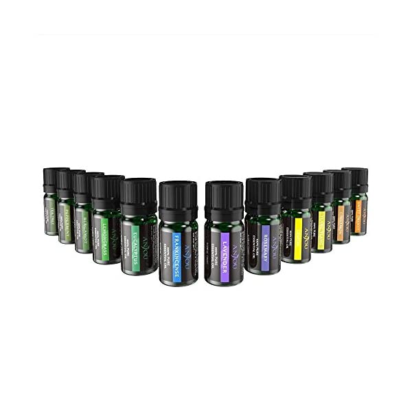 Anjou Essential Oils Set (12Pcs Oils, 100 Percent Pure Lavender, Sweet Orange, Tea Tree, Eucalyptus, Lemongrass…