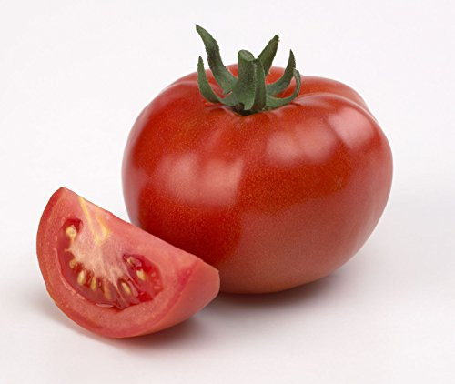 Shoopy Star 25 - EED: Electra F1 Melon hybride EED - net moyen avec fleh orange vif. WEET !!!!!