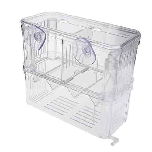 Xuniu Aquarium Inkubator Aquarium Separative Box Zucht Doppelzüchter Isolierung