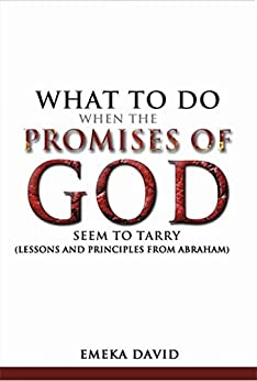 What To Do When The Promises Of God Seem To Tarry  : Lessons And Principles From Abraham (English Edition) par [David, Emeka]