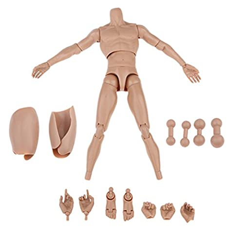 Sharplace 1/6 Scale Muscular Action Figure Nude Body 12inch Male Action Figure Model Toys with Body