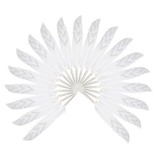 12pcs-plume-doie-naturelle-10-16cm-diy-accessoires-dartisanat-en-argent-blanc