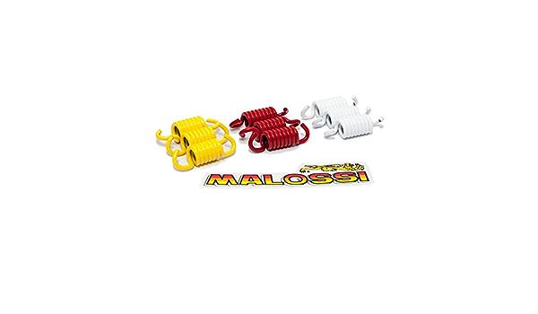Kupplungsfedern Malossi Für Honda Piaggio Yamaha Piaggio Leader Quasar 125 300ccm 4 Takt Motoren Auto