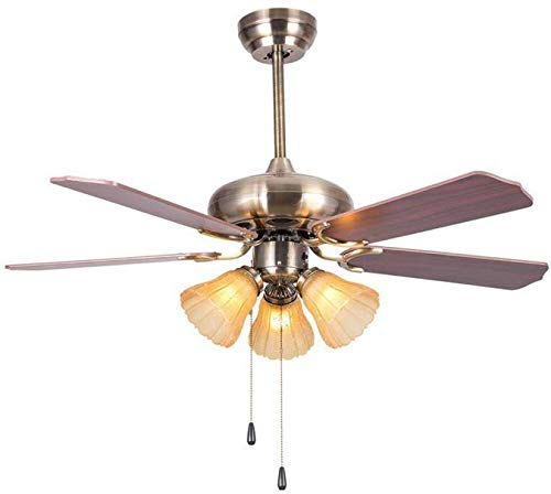 Hans Lighting Ceiling Fan with Light, 5 Blade, 48 inch (Tea Color Lamp)
