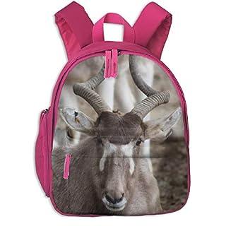 ADGBag Durable Addax Close Pocket Backpacks Backpack Schoolbag for Childrens Kids Children Boys Girls