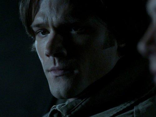 Sympathy for the Devil - Jensen Button